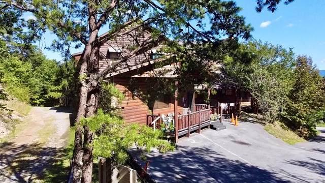 1231 Pine Mountain Way, Sevierville, TN 37862 (#245234) :: Century 21 Legacy