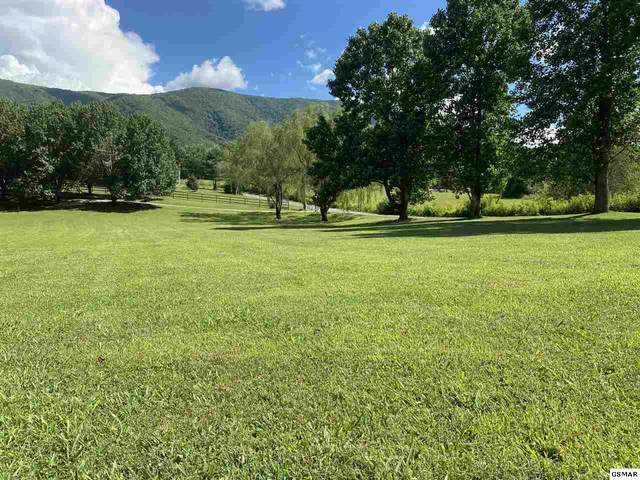 Thayer Ln Lot 1G-2, Sevierville, TN 37862 (#245288) :: The Terrell-Drager Team