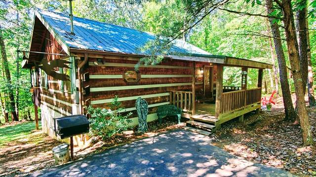 1737 Blue Ridge Rd, Sevierville, TN 37876 (#245305) :: Colonial Real Estate
