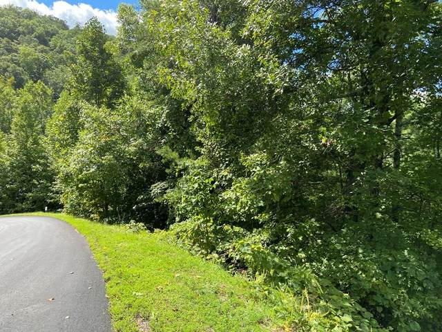 Long Rifle Rd. Lot 119, Sevierville, TN 37862 (#245308) :: The Terrell-Drager Team