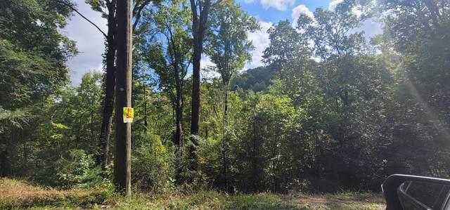 Lot 2 Cove Mtn Ln, Sevierville, TN 37682 (#245438) :: Prime Mountain Properties