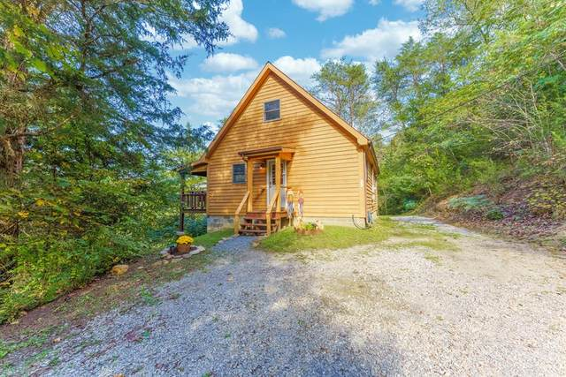601 Whites School Road, Sevierville, TN 37876 (#245561) :: Colonial Real Estate