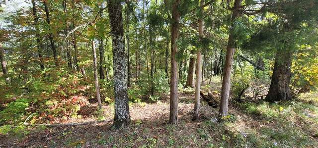 Lot 097A Shell Mtn Rd, Sevierville, TN 37876 (#245569) :: Century 21 Legacy