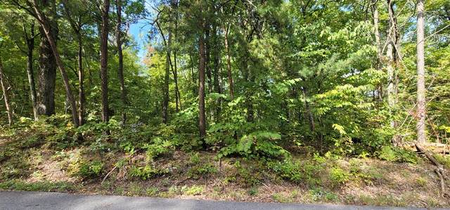 Lot 102A Shell Mtn Rd, Sevierville, TN 37878 (#245572) :: Century 21 Legacy
