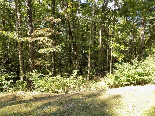 Lot 13 Classic Rd, Newport, TN 37821 (#245579) :: Tennessee Elite Realty