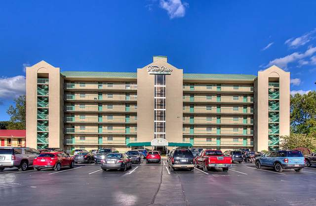 3215 N River Rd Ste 502, Pigeon Forge, TN 37863 (#245627) :: Tennessee Elite Realty
