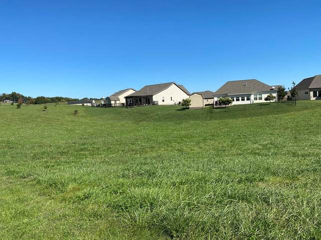 Rippling Waters Cir, Sevierville, TN 37876 (#245635) :: Billy Houston Group