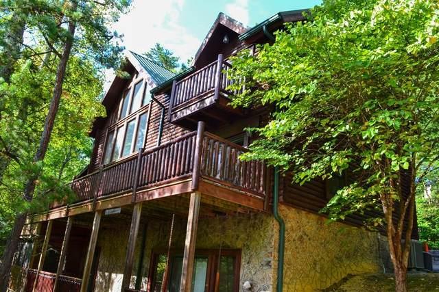 2920 Raven Fork Circle, Sevierville, TN 37876 (#245638) :: Collins Family Homes | Keller Williams Smoky Mountains