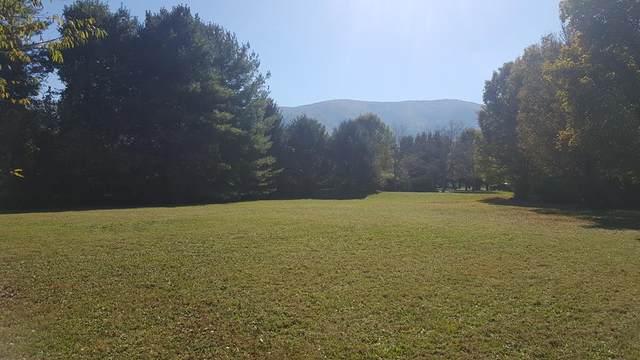 Colton Circle, Sevierville, TN 37862 (#245650) :: Collins Family Homes   Keller Williams Smoky Mountains