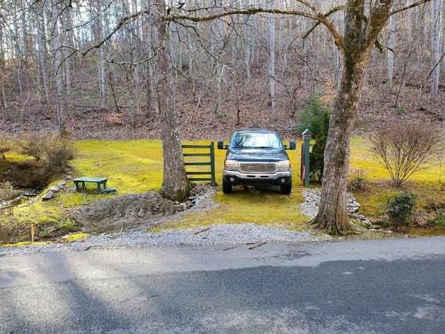 Apple Valley Road, Sevierville, TN 37876 (#245662) :: Century 21 Legacy