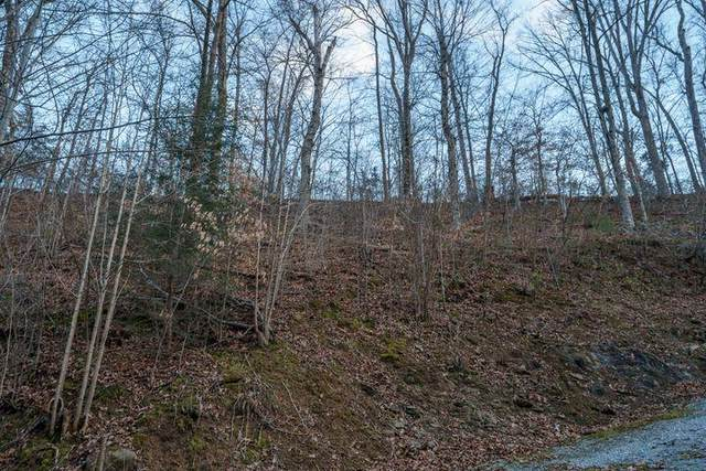 Dunn Hollow Rd, Sevierville, TN 37862 (#245669) :: Century 21 Legacy