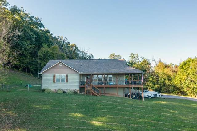 1602 Rays Gap Road, Seymour, TN 37865 (#245672) :: Prime Mountain Properties