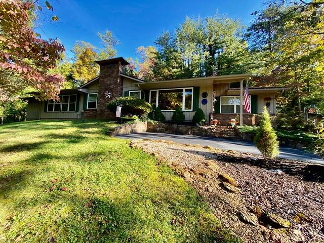450 Lakeshore Dr, Sevierville, TN 37738 (#245711) :: Colonial Real Estate