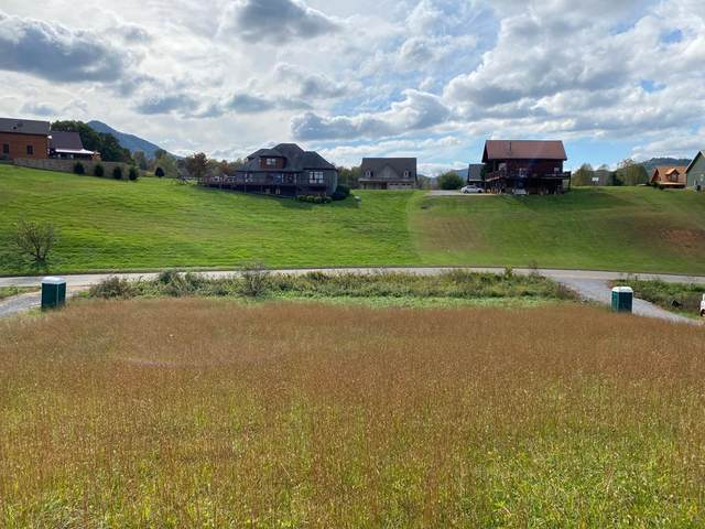 Clear Valley, Sevierville, TN 37862 (#245712) :: Suzanne Walls with eXp Realty