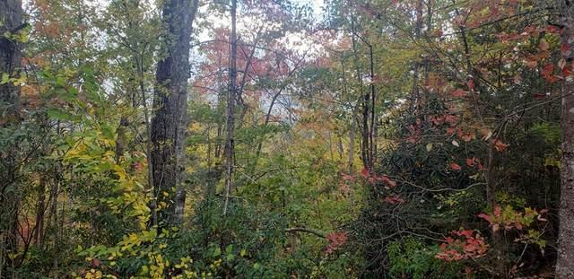 0000 Jay Bird Drive, Gatlinburg, TN 37836 (#245738) :: Prime Mountain Properties