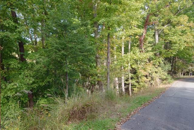 Lucerne Way, Gatlinburg, TN 33738 (#245754) :: Prime Mountain Properties