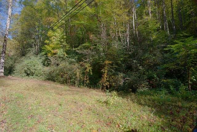 Butler Branch Rd, Gatlinburg, TN 33738 (#245755) :: Prime Mountain Properties