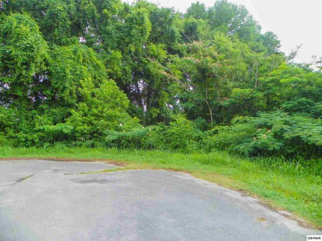 Lot 28 River Bank Road Brookfield S/D, Pigeon Forge, TN 37863 (#140524) :: Billy Houston Group