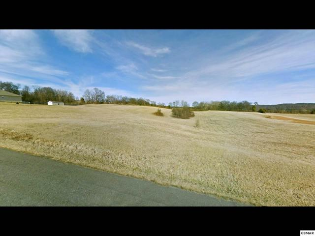 Lot 7 Forgety Road, Jefferson City, TN 37760 (#164389) :: Jason White Team | Century 21 Four Seasons