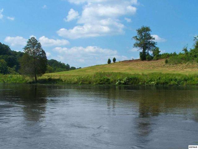 Lot 14 River Stone Drive, Blaine, TN 37709 (#190999) :: The Terrell Team