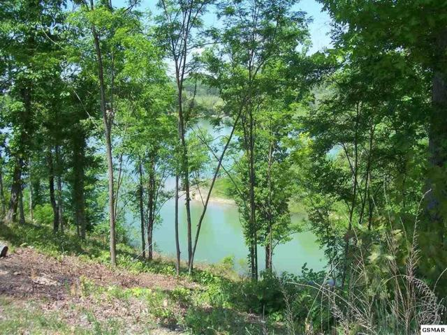 1230 Rocky Point Way Lot 50, Sevierville, TN 37876 (#196849) :: Four Seasons Realty, Inc