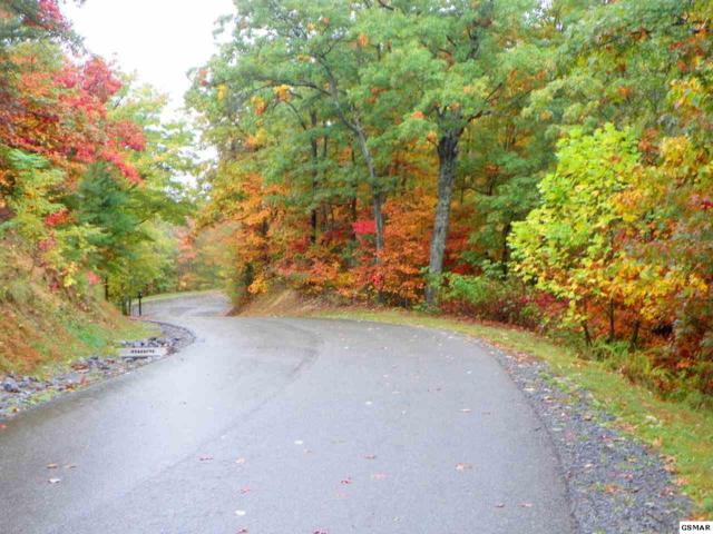 Lot 19, Laurel Top Way, Gatlinburg, TN 37738 (#199273) :: The Terrell Team