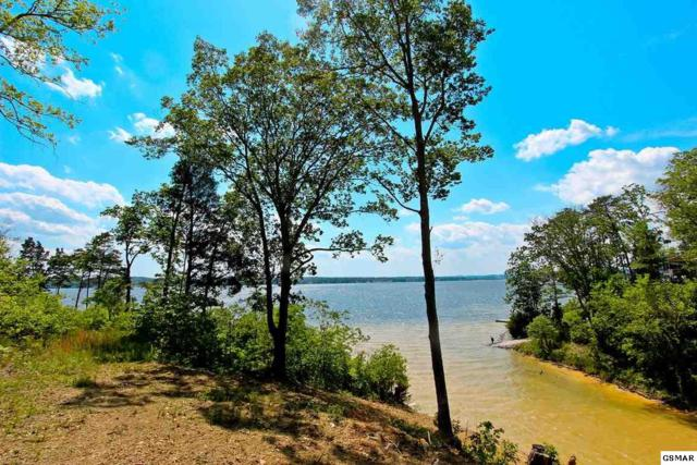 2.12 Acres Travelers Cove, Baneberry, TN 37890 (#203671) :: Colonial Real Estate
