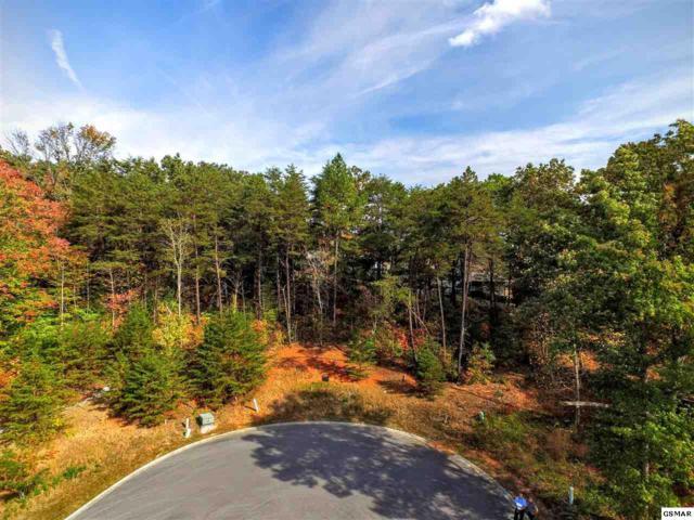 Lot 64 Sierra Lane, Sevierville, TN 37876 (#204359) :: Billy Houston Group
