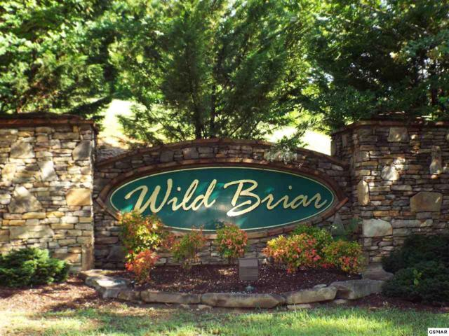 Lot 6 Blackthorn Trail, Sevierville, TN 37876 (#205052) :: Billy Houston Group