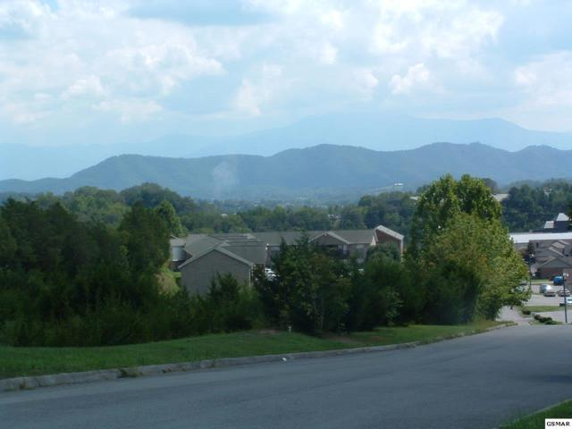 11.61Ac Murrell Meadows Drive, Sevierville, TN 37862 (#205384) :: Colonial Real Estate