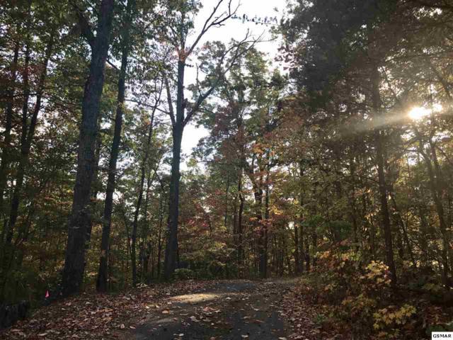 Lot 10 Gimlet Drive, Gatlinburg, TN 37738 (#206183) :: Jason White Team | Century 21 Four Seasons