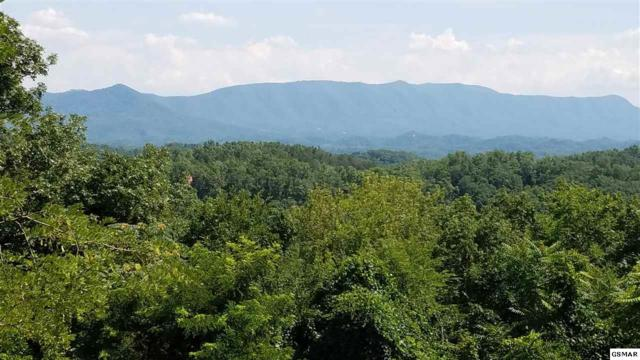 Lot 94 Stone Vista Way, Dandridge, TN 37725 (#206207) :: Tennessee Elite Realty