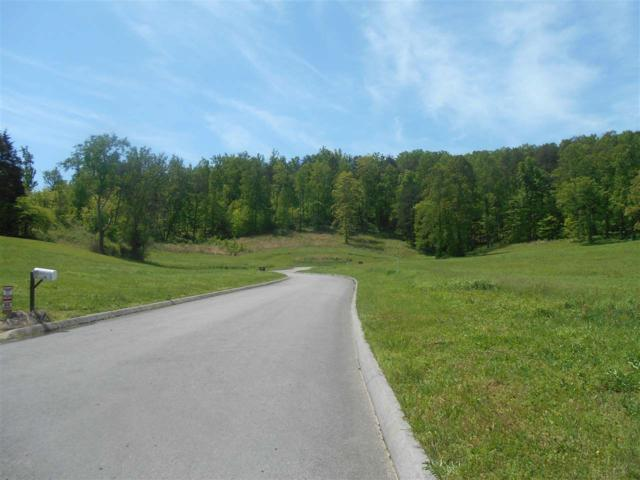 Lot 7 Briar Ridge Lane, Strawberry Plains, TN  (#206538) :: Billy Houston Group