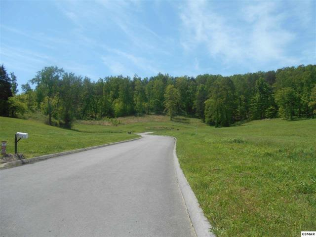 Lot 8 Briar Ridge Lane, Strawberry Plains, TN 37871 (#206544) :: Four Seasons Realty, Inc