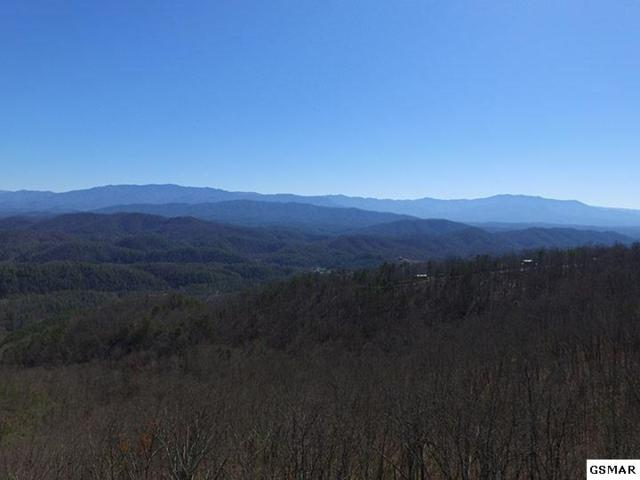 00 Shell Mountain Rd, Sevierville, TN 37876 (#207124) :: Billy Houston Group
