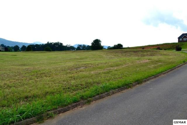 Bryce View Ln (1) Lot 1, Sevierville, TN 37876 (#208087) :: Colonial Real Estate