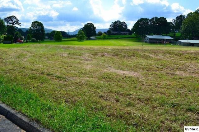 Bryce View Ln Lot 11, Sevierville, TN 37876 (#208091) :: Colonial Real Estate