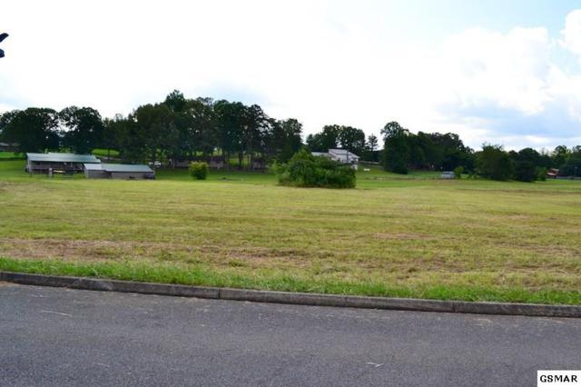 Bryce View Ln Lot 13, Sevierville, TN 37876 (#208104) :: Colonial Real Estate
