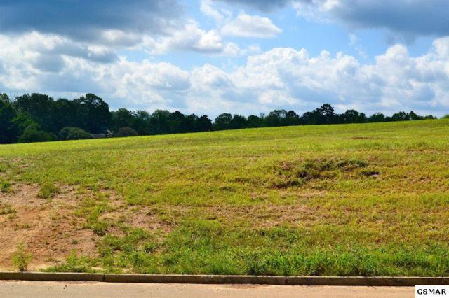 Bryce View Ln Lot 15, Sevierville, TN 37876 (#208106) :: Prime Mountain Properties