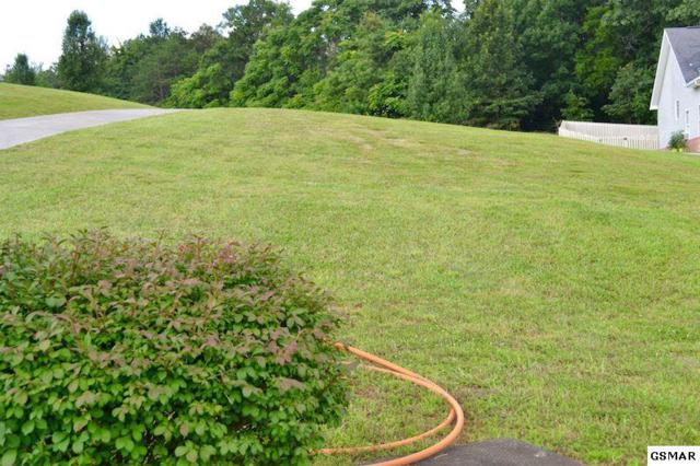Bryce View Ln Lot 19, Sevierville, TN 37876 (#208108) :: Prime Mountain Properties