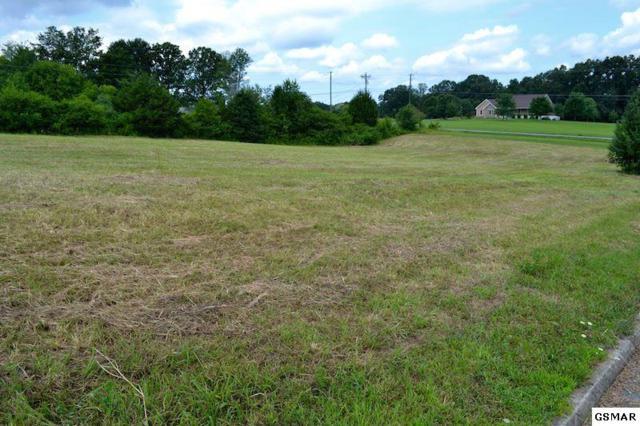 Bryce View Ln Lot 21, Sevierville, TN 37876 (#208109) :: Colonial Real Estate