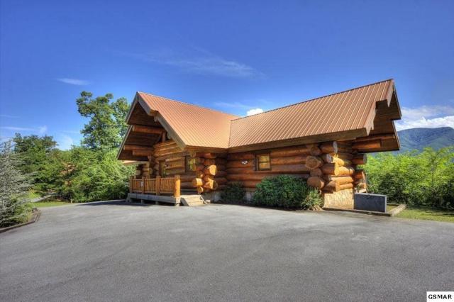 "431 Coyote Way ""Bear Paw"", Gatlinburg, TN 37738 (#208421) :: Colonial Real Estate"