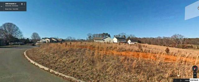 Lot 38 Amanda Lane, Sevierville, TN 37876 (#208745) :: Billy Houston Group