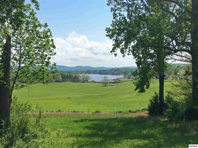 Strawberry Point Parcel 25, Bean Station, TN 37708 (#209297) :: Billy Houston Group