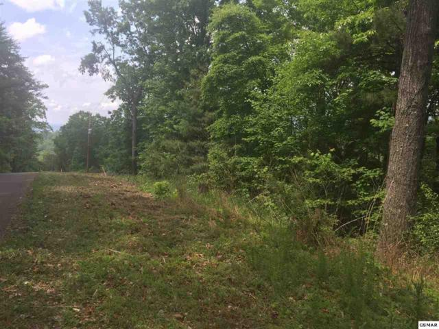 Lot 967 Ridgefield Dr, Sevierville, TN 37876 (#209431) :: Colonial Real Estate