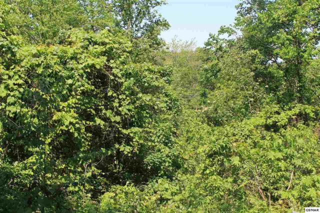 Lot 4 Stans Rd, Gatlinburg, TN 37738 (#209459) :: Colonial Real Estate