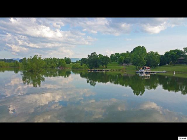 Lot 55 Wild Pear Trail, Dandridge, TN 37725 (#209860) :: Four Seasons Realty, Inc