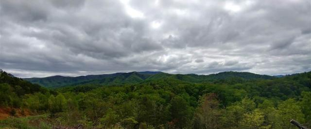 Lot 2 Phase 4 Lighting Strike Dr, Sevierville, TN 37862 (#209939) :: Four Seasons Realty, Inc