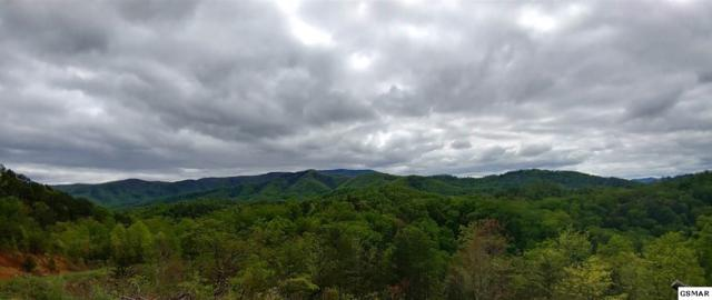 Lot 3 Phase 4 Lighting Strike Dr, Sevierville, TN 37862 (#209941) :: Four Seasons Realty, Inc