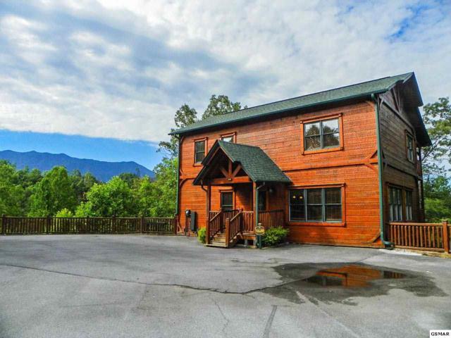 "802 Great Smoky Way ""Black Bear Bun, Gatlinburg, TN 37738 (#210001) :: Four Seasons Realty, Inc"